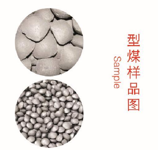 型煤样品4图片